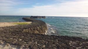 Gala 青い海 (1)