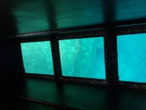 海底遺跡 (1)