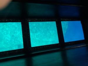海底遺跡 (4)