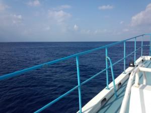 グラスボート (太平洋側)