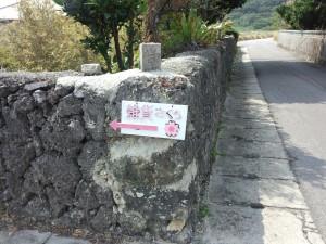 雑貨さくら (1)
