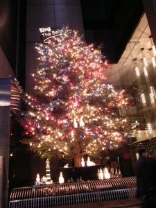 クリスマスツリー 2008