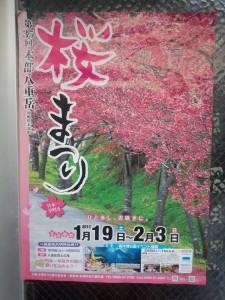 桜まつり ポスター