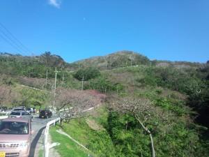 八重岳 (2)