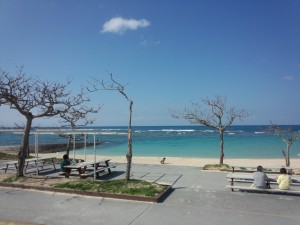 トロピカルビーチ (1)