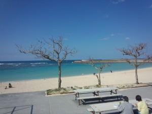 トロピカルビーチ (3)