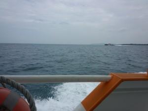 西表島・小浜島 (3)