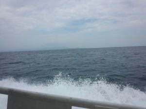 西表島・小浜島 (4)