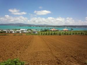 古宇利島 (2)