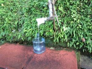 名護の湧水 (1)