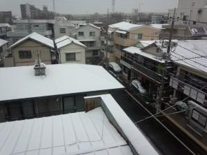 積雪 2014/02/08 (1)