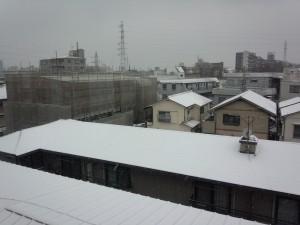 積雪 2014/02/08 (2)