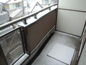 積雪 2014/02/08 (3)