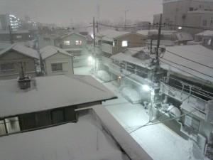 積雪 2014/02/08 (5)