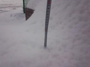 積雪 2014/02/09 (2)