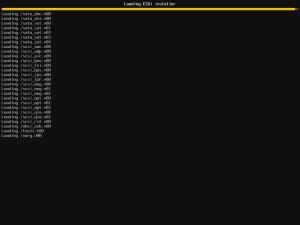 ESXi 5.1 Install (3)
