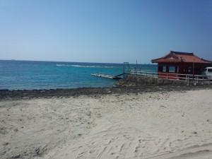 Gala 青い海 (7)