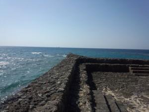 Gala 青い海 (10)