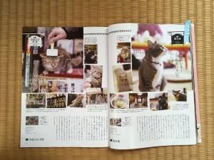猫丸庵 (6)