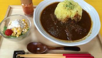 猫丸庵カレー (1)